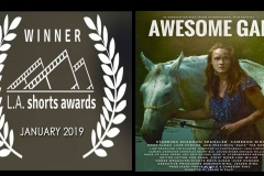 Awesome Gal Movie - Winner of the LA Shorts Awards